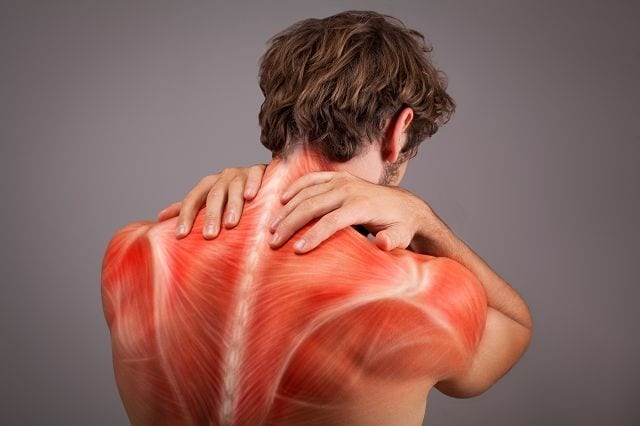 Häufig wird durch eine verhärtete Muskulatur oder verklebte Faszien Druck auf Nerven ausgeübt, die dann Schmerzen zur Folge haben.