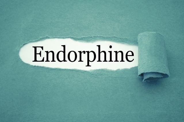 Endorphine haben eine schmerzstillende Wirkung und regeln das Hungergefühl. Sie sind mit Verantwortlich für die Entstehung von Euphorie und somit für eine gesteigerte Lebensfreude.