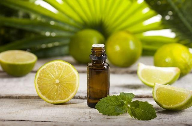 Das Limettenöl wird mittels Kaltpressung der Schalen gewonnen., wobei ca. 150 kg ca. einen Liter Öl ergeben.