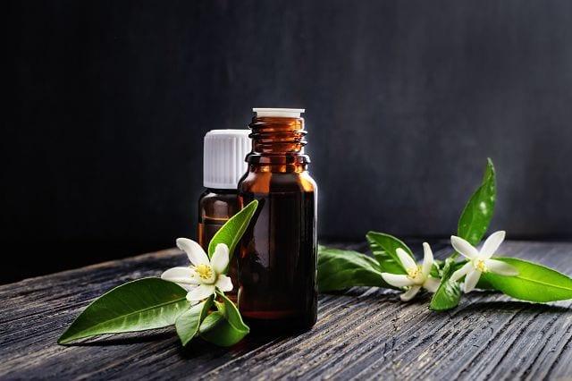 Neroliöl ist sehr kostbar, es müssen ca. 850 kg Orangenblüten verarbeitet werden um 1kg Neroliöl zu gewinnen.