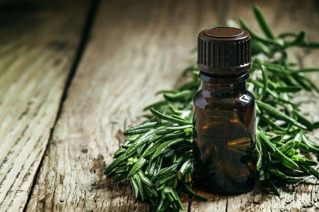 Rosmarin gehört zu Gattung der Lippenblütler. Das Öl wird mittels Wasserdampfdestillation gewonnen.