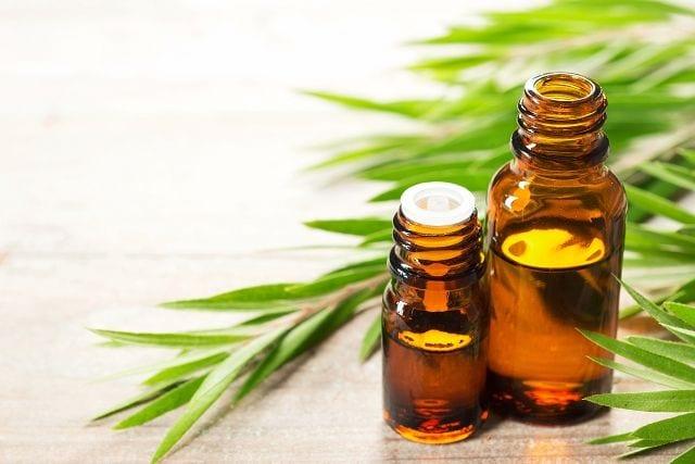 Teebaumöl enthält viele aktive Inhaltsstoffe, weshalb es in vielen medizinischen und kosmetischen Produkten verwendet wird.