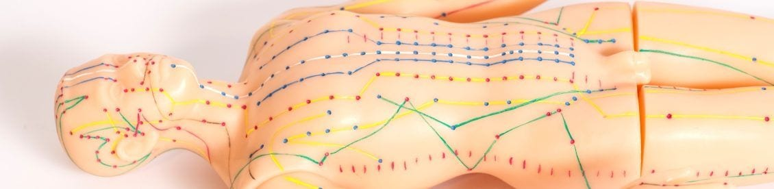 Akupressurpunkte am menschlichen Körper anhand einer Puppe